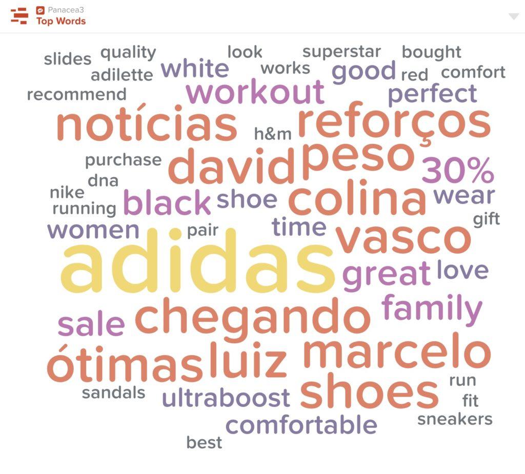 p3 dashboard panacea3 top words